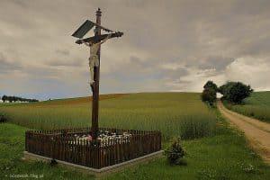 Krzyż przydrożny - fot. Bogdan Nitka, borowiak.flog.pl