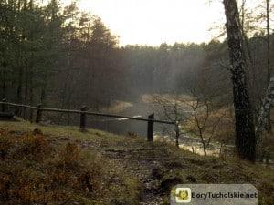 Bory Tucholskie - zakole Brdy, miejsce wodowania drewna - binduga